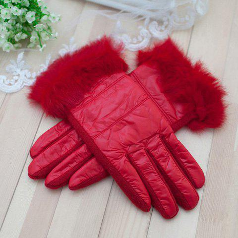 Pair of Cute Fluff Embellished Colored Gloves For Winter For Women