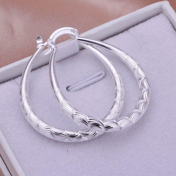 Pair Of Women's Fashion Elliptical Fish Grain Earrings -