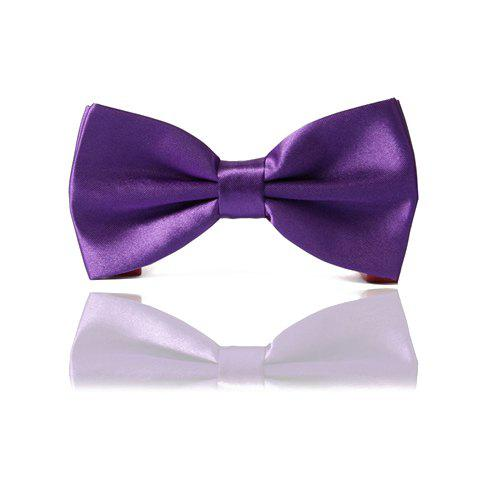 Fashionable Purple Bow Tie For Men - PURPLE