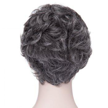 Towheaded Laconic Short Big Curly Side Bang Heat Resistant Fiber Synthetic Women's Grey Wig - COLORMIX