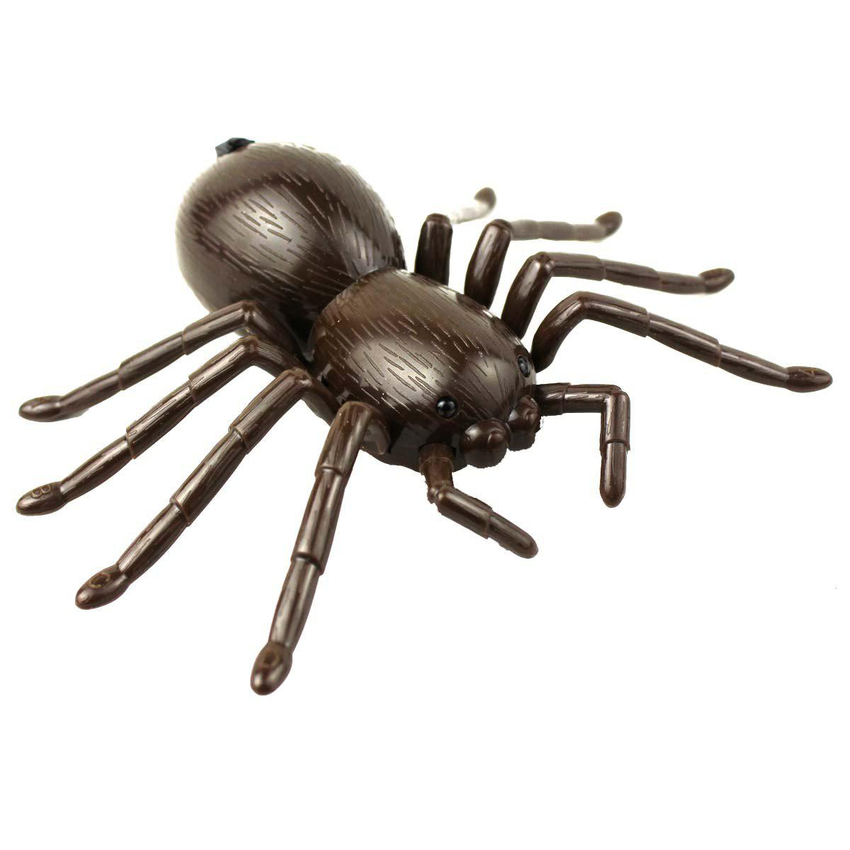 Simulation Remote Control Spider Electronic Animal Model Toy  infrared remote control simulation brazil turtle toy animal model