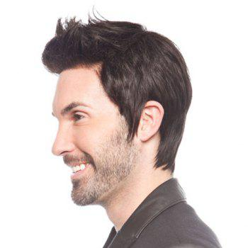 Heat Resistant Synthetic Fluffy Straight Short Capless Vogue Black No Bang Wig For Men -  BLACK