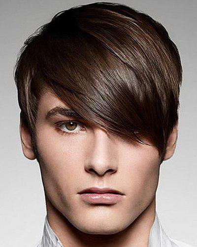 Vogue Inclined Bang Silky Straight Short Stunning Deep Brown Capless Synthetic Wig For Men
