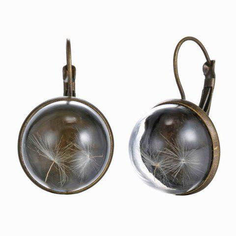 Pair of Vintage Transparent Cover Round Dandelion EarringsJewelry<br><br><br>Color: COPPER COLOR