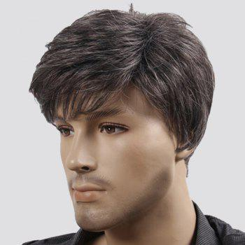 Fluffy Short Natural Wave Synthetic Men's Wig -  COLORMIX