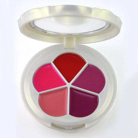 Professional 5 Colors Pearl Matte Lip Gloss Palette with Mirror - COLORMIX