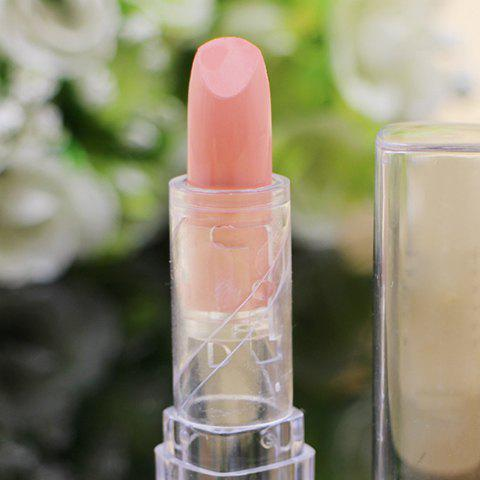 Moisturizing Translucent Tube Mini Lipstick -