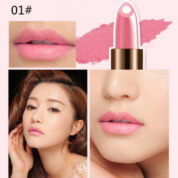 Durable 12 Colours Natural Snail Filling Hydrated Glossy Moisturizing Lipstick