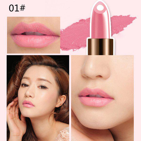 Durable 12 Colours Natural Snail Filling Hydrated Glossy Moisturizing Lipstick -