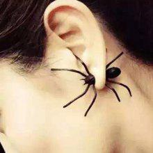 ONE PIECE Charateristic Spider Shape Earring for Ladies