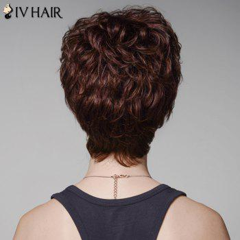 Skilful Curly Human Hair Full Bang Short Wig For Women -  DARK BROWN