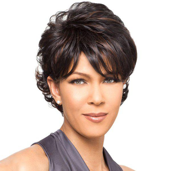 Elegant Dark Brown Highlight Side Bang Fluffy Short Wave Synthetic Wig For Women - COLORMIX