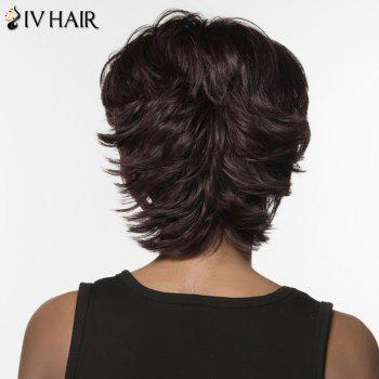 Elegant Short Siv Hair Fluffy Wave Women's Capless Real Natural Hair Wig -  JET BLACK
