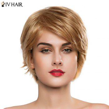 Bouffant Anti Alice Human Hair Capless Stylish Short Side Bang Women's Siv Hair Wig