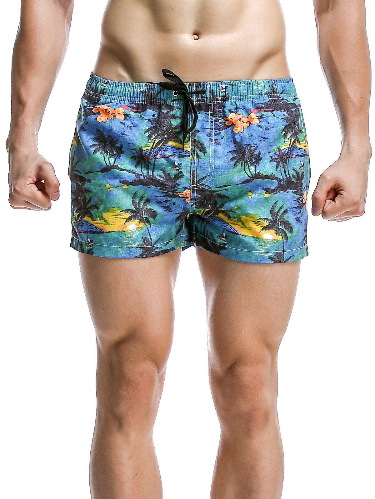 Men's Casual Coconut Tree Printed Boardshorts