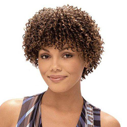 Shaggy Curly Synthetic Nobby Short Brown Mixed Capless Wig For Women - COLORMIX