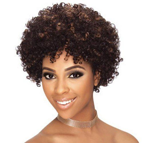 Fashion Women's Heat Resistant Synthetic Afro Wig - COLORMIX