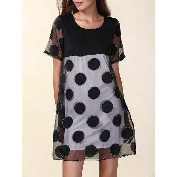 Mesh Panel Polka Dot Mini A Line Dress