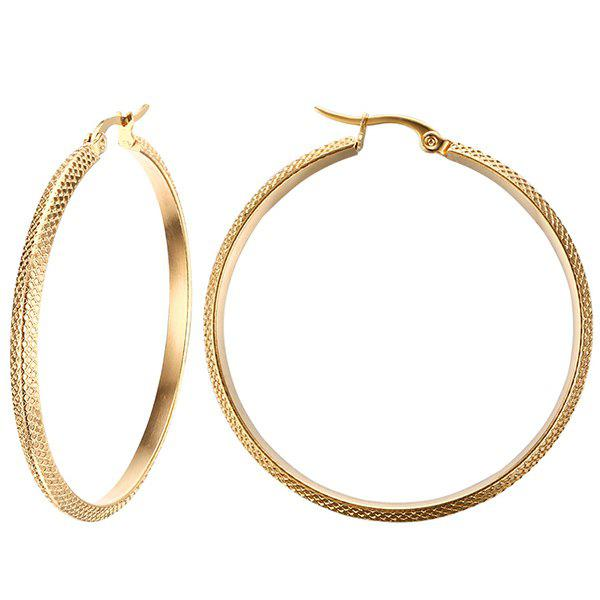 Pair of Gorgeous Alloy Big Circle Earrings For Women