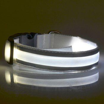 Fashion LED Luminous Outdoor Supplies Stripe Design Collar For Dogs