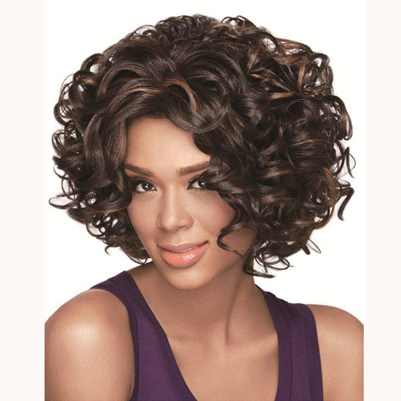 Fluffy Curly Side Bang Kanekalon Synthetic Trendy Brown Highlight Short Wig For Women - COLORMIX