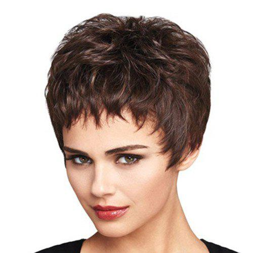 Fashion Short Layered Cut Synthetic Fluffy Slightly Curled Dark Brown Mixed Wig For Women