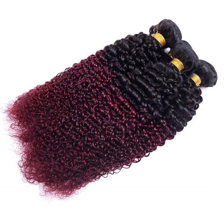 Élégant 1 Pcs mixte couleur Kinky Curly femmes s '7A Virgin Brazilian Hair Weave - multicolorcolore 14INCH