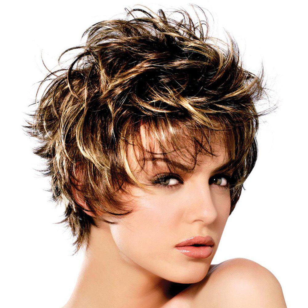 Faddish Short Fluffy Mixed Color Slightly Curled Side Bang Synthetic Hair Wig For Women