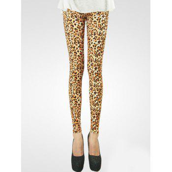 Fashionable Leopard Printed Leggings For Women