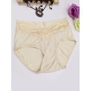 Lace Panel High Waisted Briefs