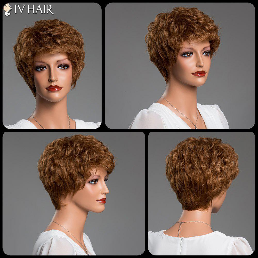 Short Fluffy Curly Real Natural Hair Siv Wig - AUBURN BROWN