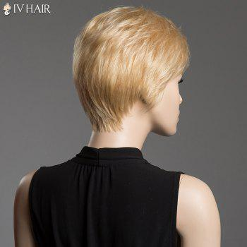 Fluffy Short Natural Straight Siv Hair Side Bang Real Human Hair Wig -  AUBURN BROWN