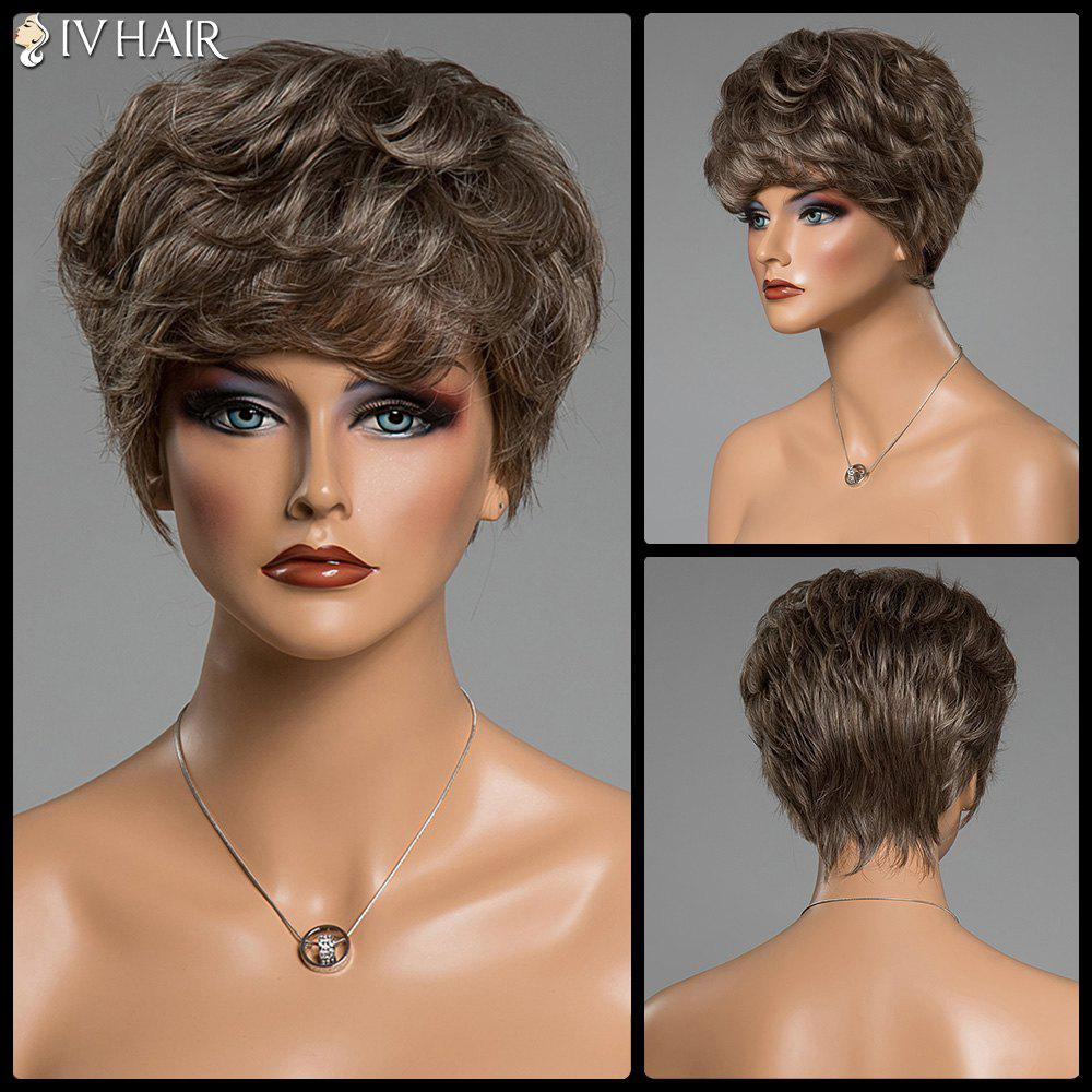 Fluffy Curly Real Human Hair Various Color Short Siv Hair Capless Wig - DARKEST BROWN/GRAY