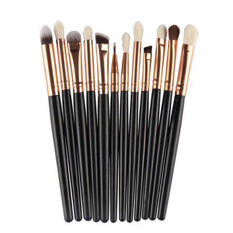 Professional 12 Pcs Goat Hair Eye Makeup Brush Set - BLACK