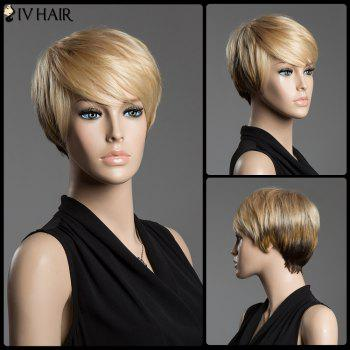 Buy Straight Ombre Color Short Haircut Siv Hair Capless Inclined Bang Human Wig COLORMIX