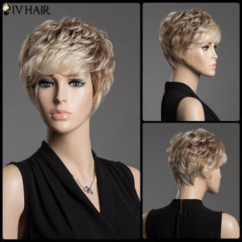 Assorted Color Spiffy Short Siv Hair Fluffy Curly Capless Human Hair Wig
