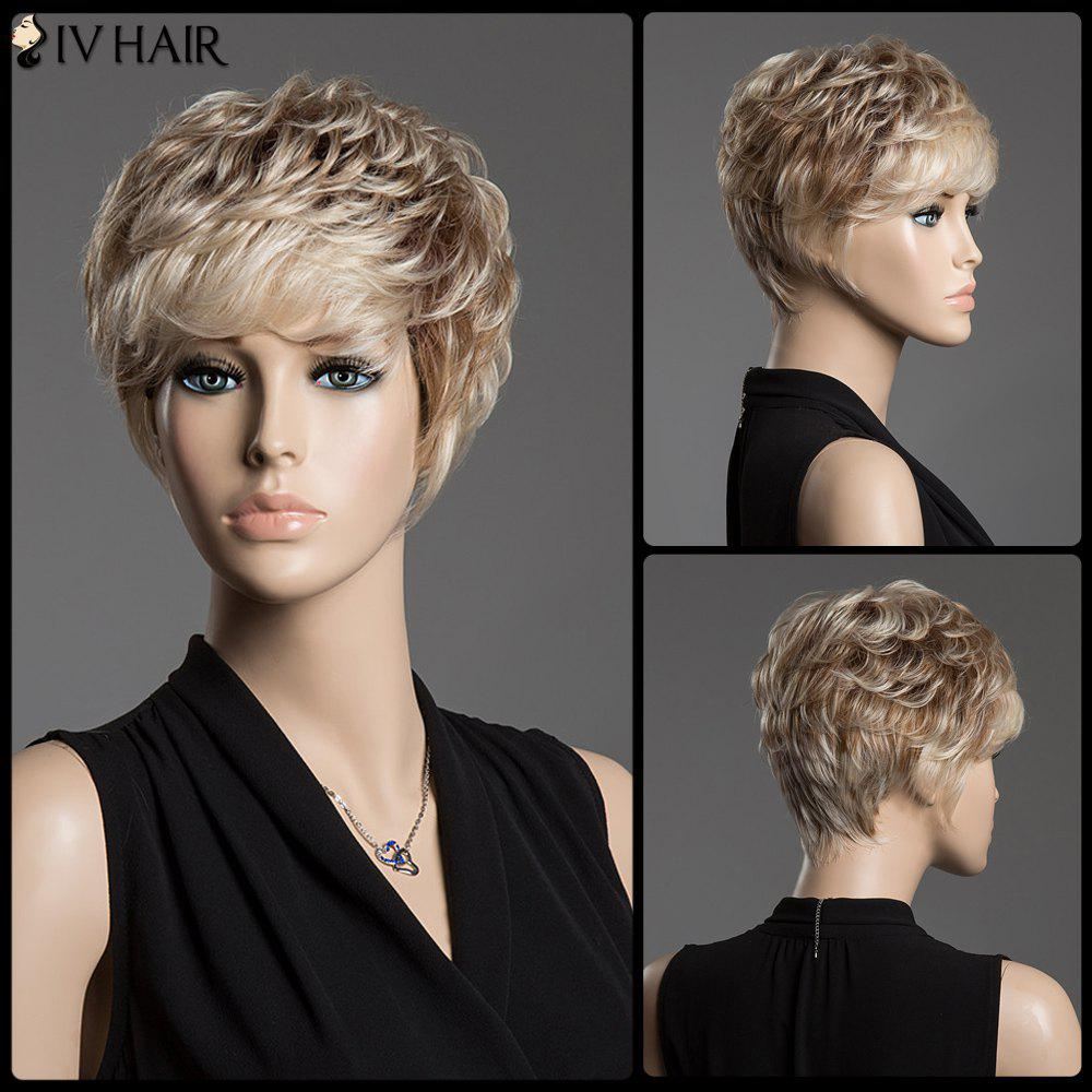 Assorted Color Spiffy Short Siv Hair Fluffy Curly Capless Human Hair WigHair<br><br><br>Color: COLORMIX