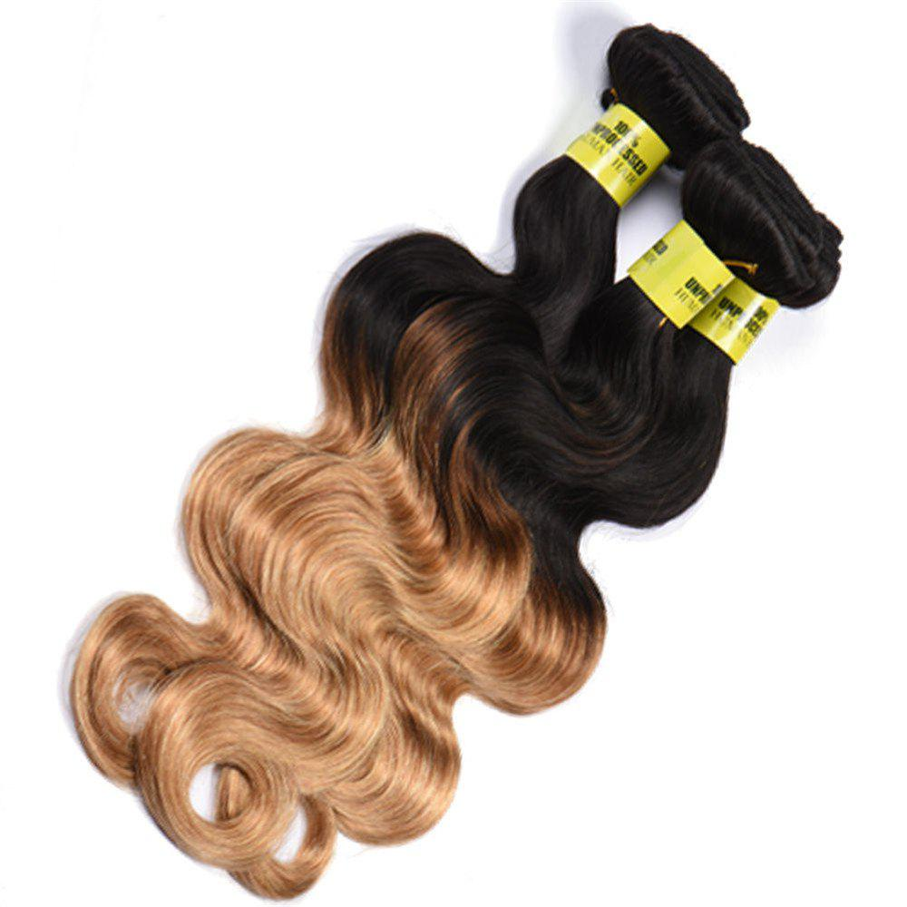 6A Virgin 1 Pc Multicolored Body Wave Brazilian Hair Weaves - COLORMIX 12INCH