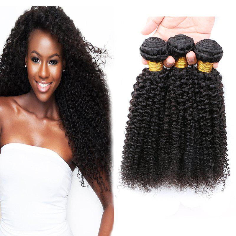 3 Pcs Jerry Curly 7A Vierges indiennes Tissages Cheveux - Noir 22INCH*24INCH*24INCH
