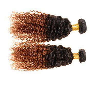 Double Color Deep Curly 3Pcs/Lot 6A Virgin Brazilian Hair Weaves - COLORMIX COLORMIX