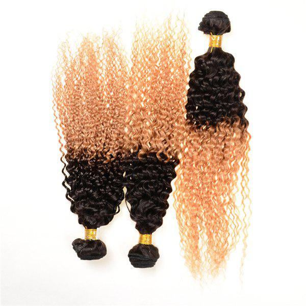 Double Color 3Pcs/Lot Deep Curly 6A Virgin Brazilian Hair Weaves - COLORMIX 18INCH*18INCH*20INCH