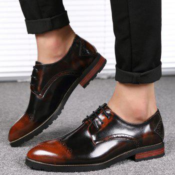 Pointed Toe Tie Up Engraving Formal Shoes - 41 41