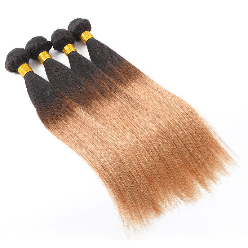 1 PCS Multi Color 6A Virgin Straight Brazilian Hair Weaves - COLORMIX 10INCH