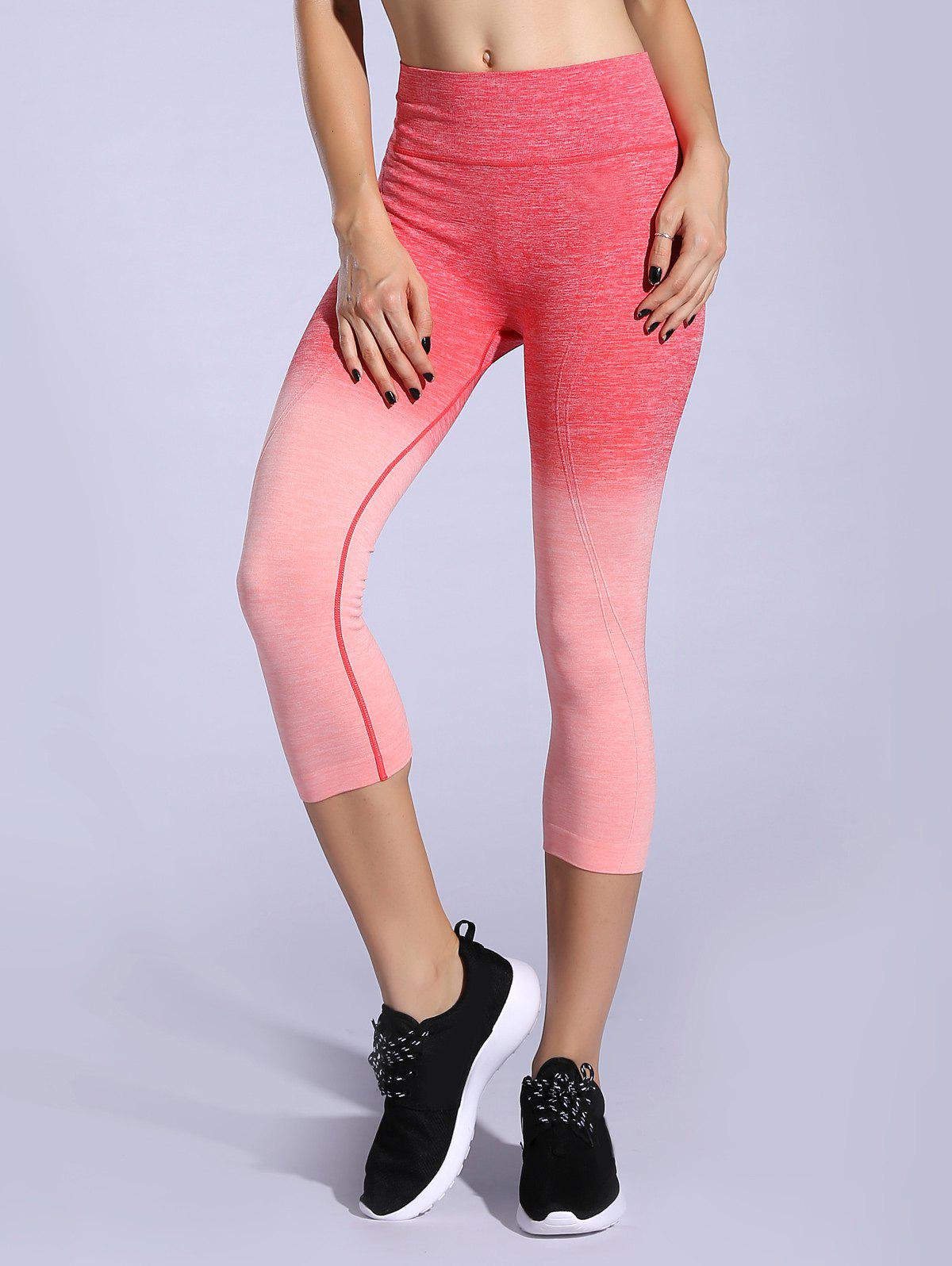 Extensible Ombre Space-Dyed Sporty Leggings - Orange Rose L