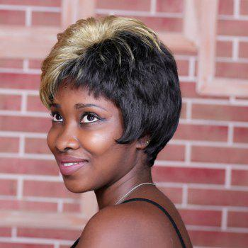 Short Mixcolor Full Bang Fluffy Straight Synthetic Wig -  COLORMIX