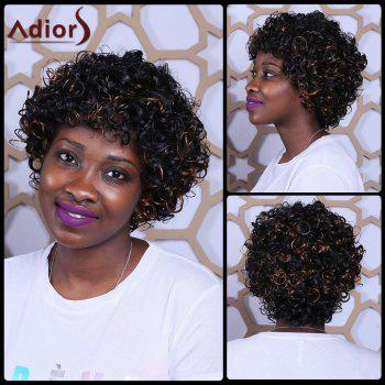Short Mixcolor Full Bang Fluffy Afro Curly Synthetic Wig