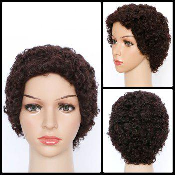 Short Curly Spiffy Synthetic Wig