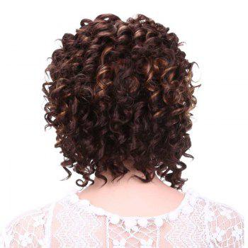 Short Side Bang Afro Curly Fluffy Synthetic Wig - DEEP BROWN
