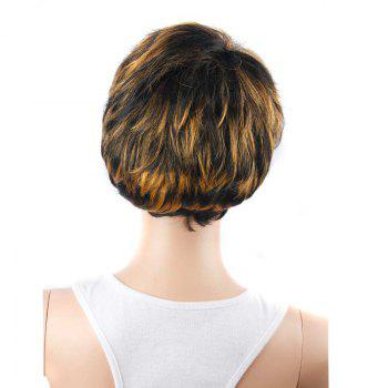 Short Manly Full Bang Mixed Color Straight Synthetic Wig - COLORMIX