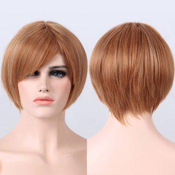 Buy Short Mixed Color Side Bang Capless Straight Synthetic Wig COLORMIX